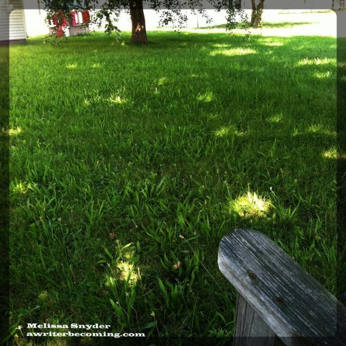 Sacred spaces - backyard