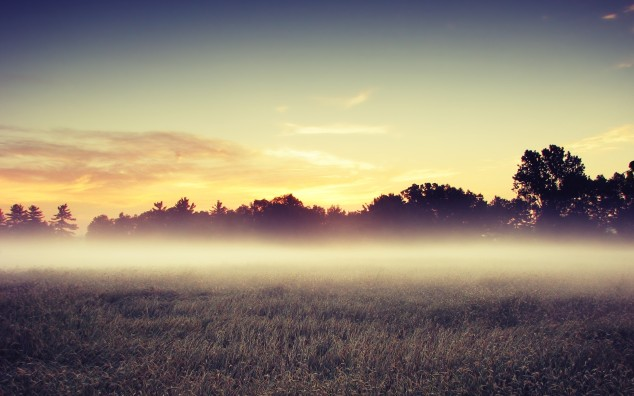 morning-mist-wallpapers-17