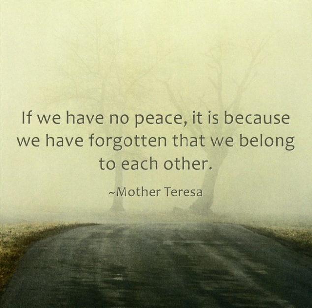 mother-teresa-if-we-have-no-peace-it-is-because-we-have-forgotten-that-we-belong-to-each-other